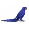 Carrefour colectiv – Cumparaturi online