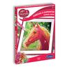 Carrefour desene zurli – Catalog online