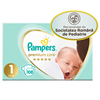 Pampers nr 1 Carrefour – Online Catalog