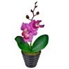 Orhidee artificiala ikea – Cumpărați online