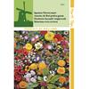 Flori Leroy Merlin – Cea mai bună selecție online