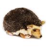 Arici de plus Lidl – Cea mai bună selecție online