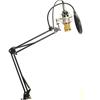 Microfon karaoke Lidl – Online Catalog